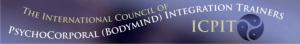 ICPIT Banner